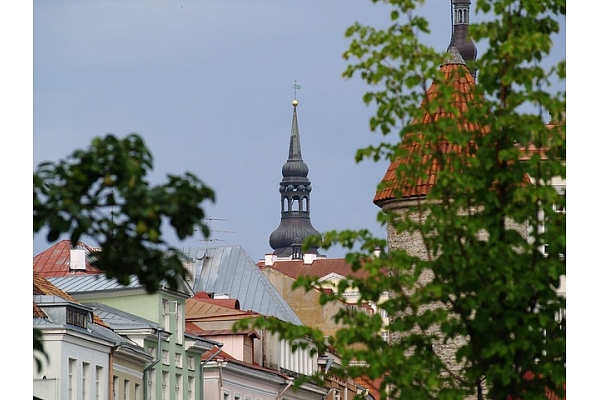 Estonian Stock Market