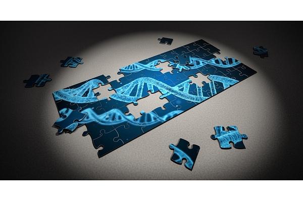 Jauna ģenētiskā analīze, kas palīdzēs diagnosticēt embrionālās dalīšanās defektus